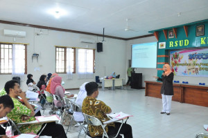 workshop-ppi-rsud-kraton-15-16-mei-2017